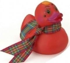 tartan duck.JPG